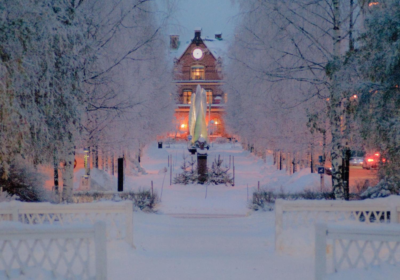 Umeå - Swedish city of birch trees